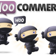 Dear WooCommerce: Regarding Version 2.1