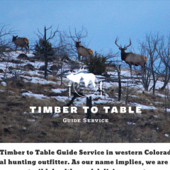 Timber to Table Guide Service